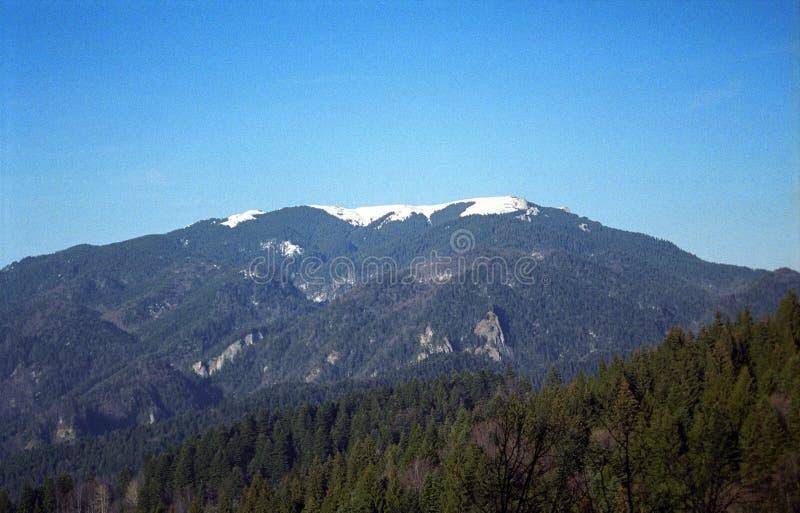 Vista superiore della montagna fotografia stock libera da diritti