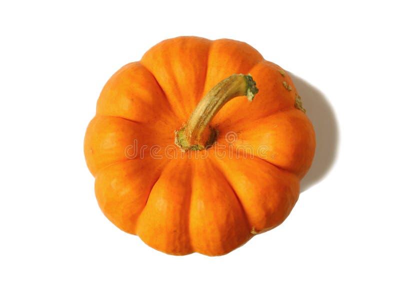 Vista superiore della zucca arancio di colore con il gambo isolato su fondo bianco fotografia stock