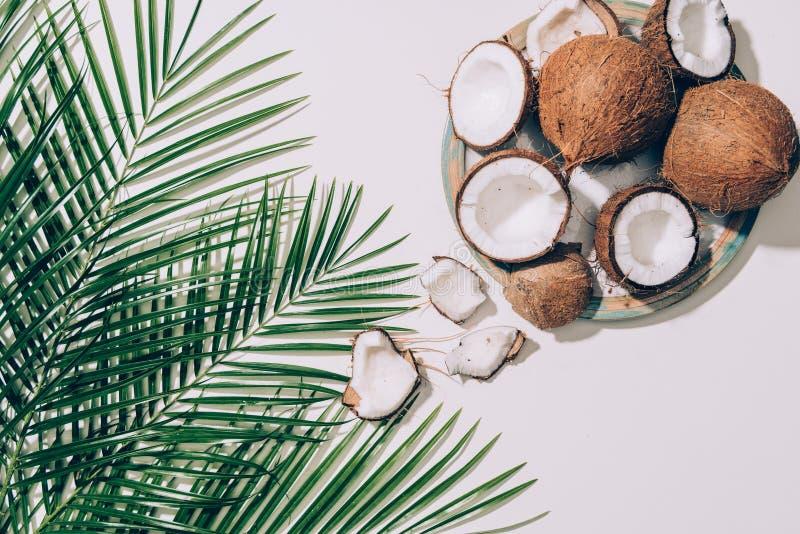 vista superiore delle noci di cocco organiche gastronomiche e delle foglie di palma verdi fotografia stock