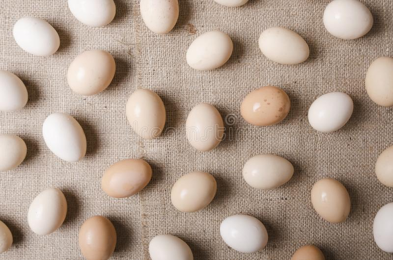 Vista superiore delle uova sulla tela di sacco Concetto dell'azienda agricola ed uova di raccolta immagine stock