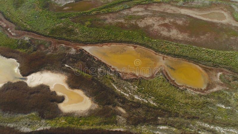 Vista superiore di acqua sporca modellata dalla palude colpo L'acqua marrone acida con i boschetti verdi assomiglia ad arte fluid fotografia stock libera da diritti