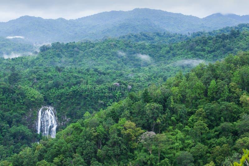 Vista superiore di paesaggio di bella cascata in foresta tropicale, fres immagini stock libere da diritti