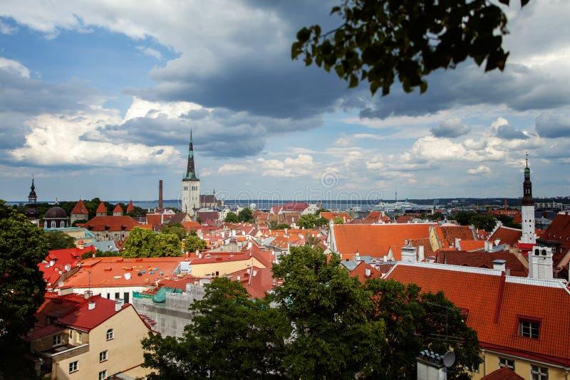 Vista superiore di Tallinn della vecchia città fotografia stock