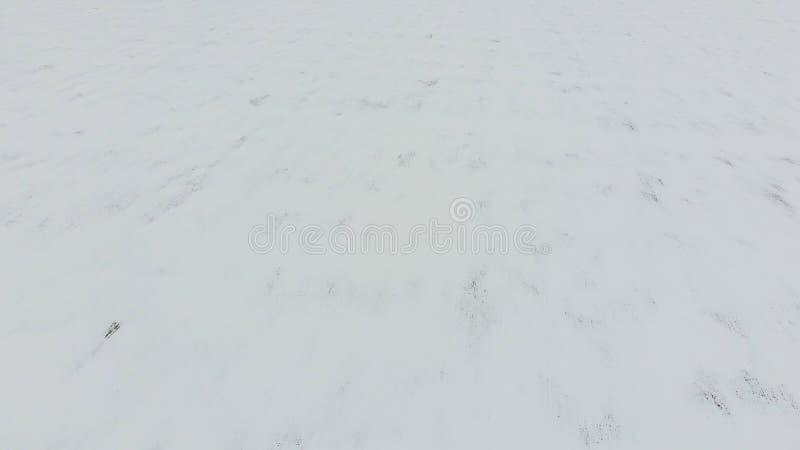 Vista superiore di un campo arato nell'inverno Un campo di grano nella neve immagine stock