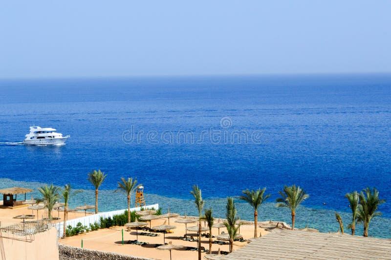 Vista superiore di una spiaggia sabbiosa con i lettini e gli ombrelloni e di due grandi navi bianche, una barca, una fodera di cr fotografia stock