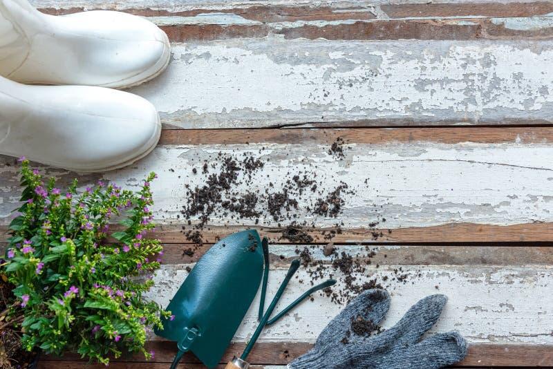 Vista superiore sul giardinaggio una pala riempita di strumento conservato in vaso nel tempo di molla di estate del giardino, spa fotografia stock libera da diritti