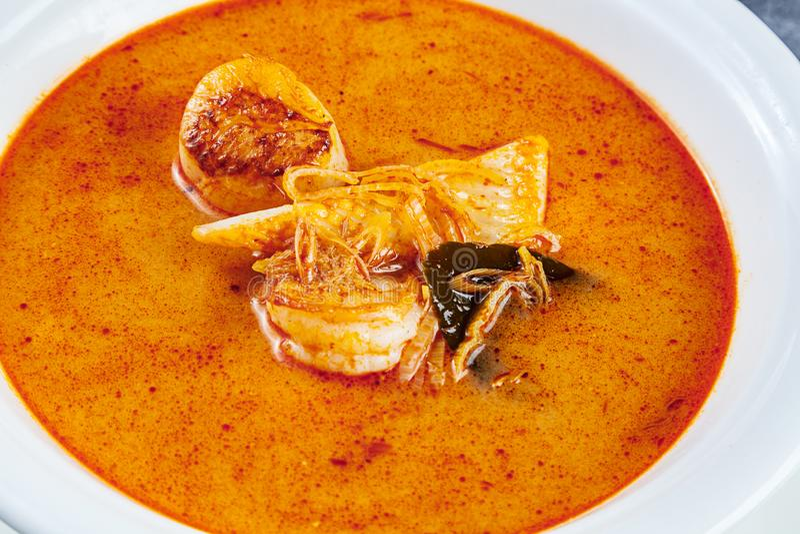 Vista superiore sulla minestra di yum di gatto servita in piatto bianco con riso minestra con gamberetto, frutti di mare, latte d fotografia stock libera da diritti