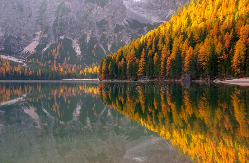 Vista surpreendente do lago Braies no dia do outono imagem de stock