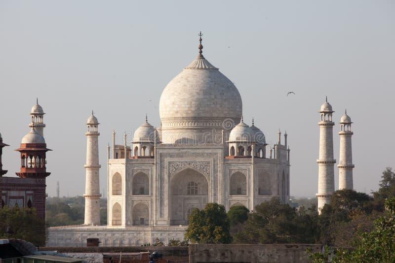 Vista a Taj Mahal, Agra, Índia imagens de stock royalty free