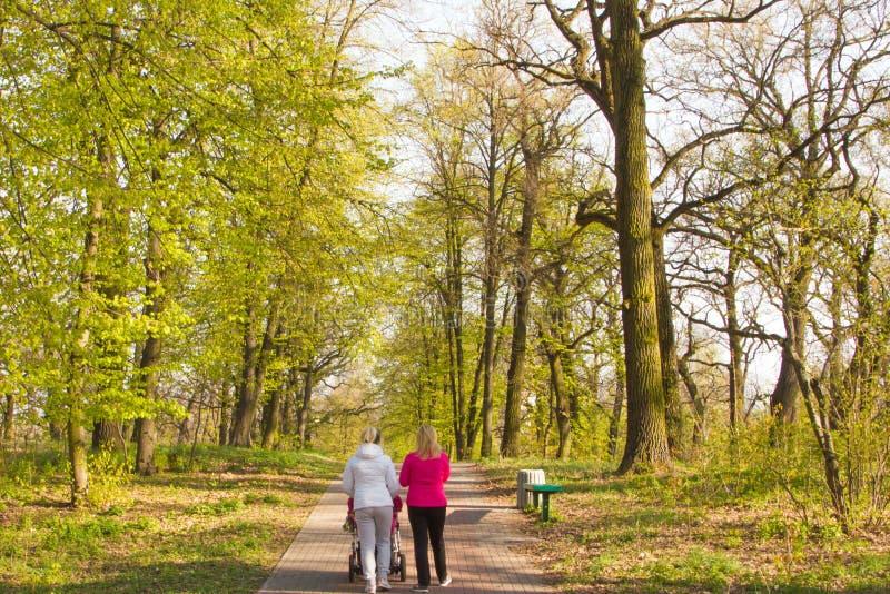 Vista traseira em duas moças que andam e que falam na mola Oak Park imagem de stock royalty free
