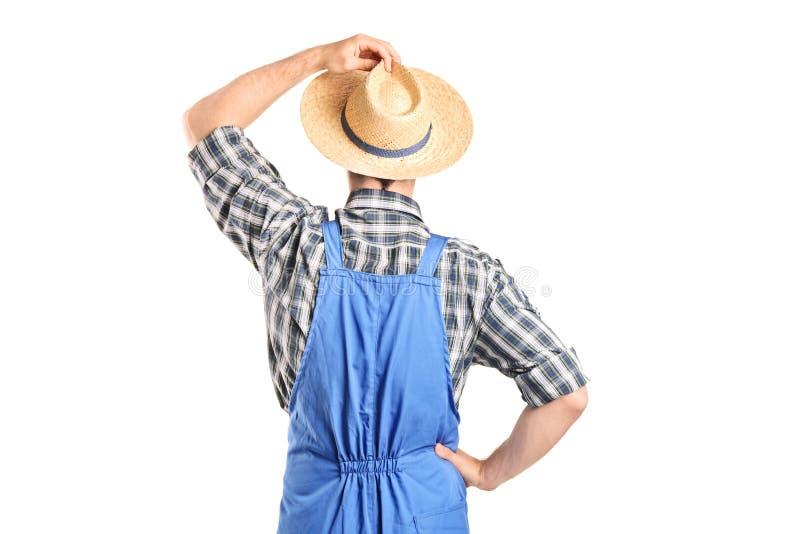 A vista traseira, estúdio disparou de um trabalhador agrícola imagens de stock royalty free