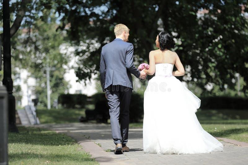 Vista traseira pares felizes que andam na aleia do parque fotografia de stock royalty free