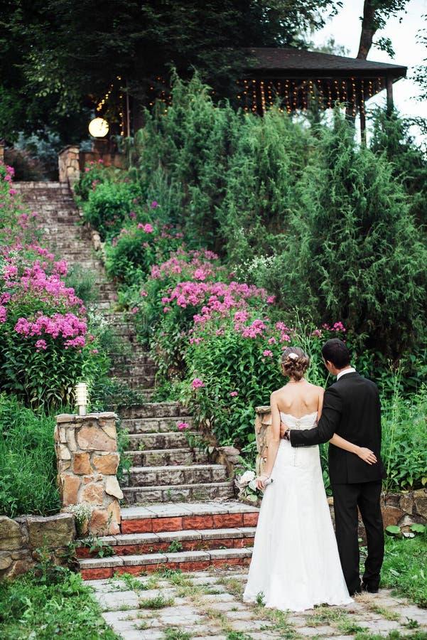 Vista trasera de los pares de la boda que miran la escalera de piedra fotografía de archivo libre de regalías