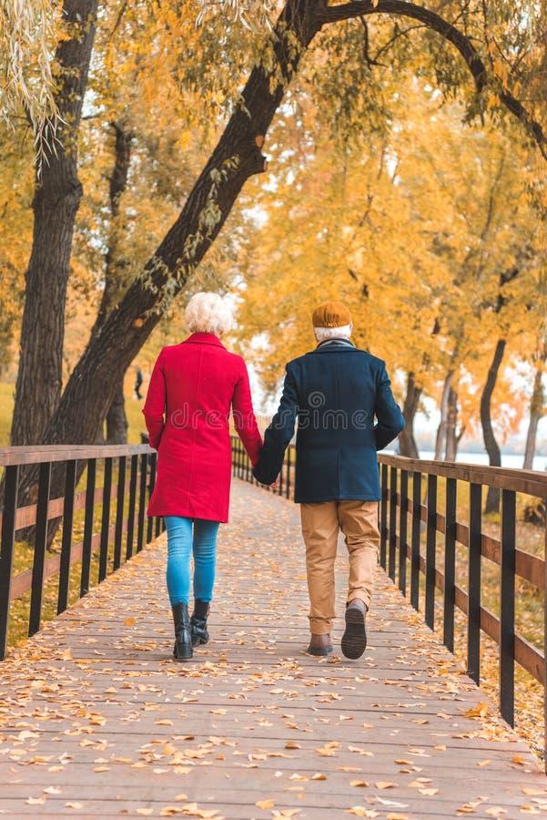 vista trasera de los pares mayores que celebran las manos y caminar imágenes de archivo libres de regalías