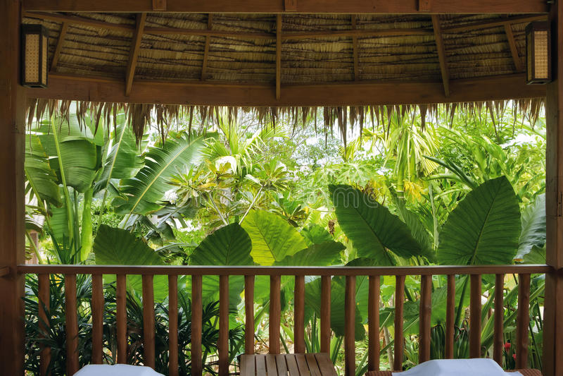 Vista tropicale immagini stock libere da diritti