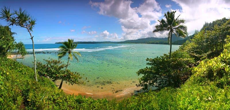 Vista tropicale del ricorso in Kauai Hawai immagini stock libere da diritti
