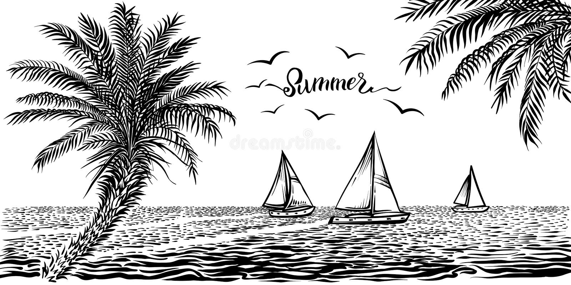 Vista tropicale dell'oceano o del mare con le barche a vela e le palme Disegno panoramico della spiaggia di vettore illustrazione di stock
