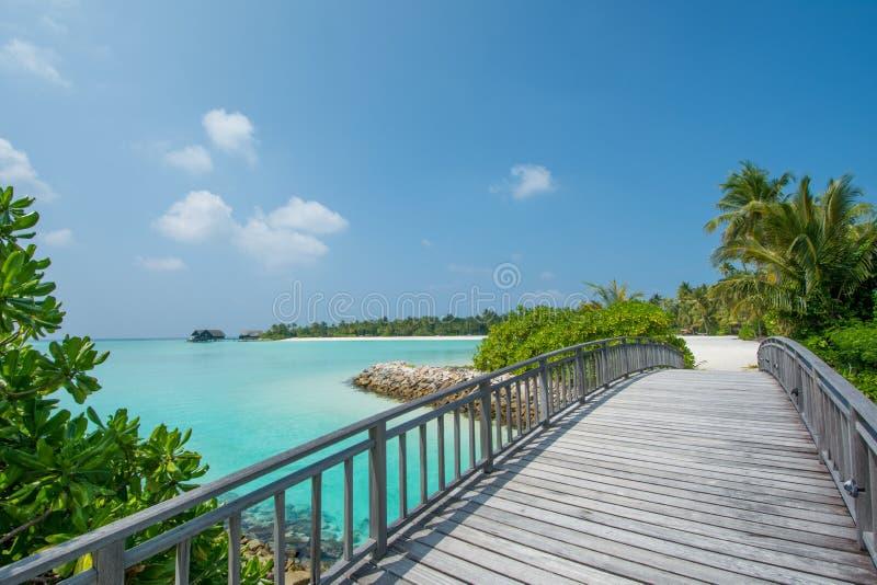 Vista tropicale della laguna dell'oceano dal ponte alle Maldive fotografia stock