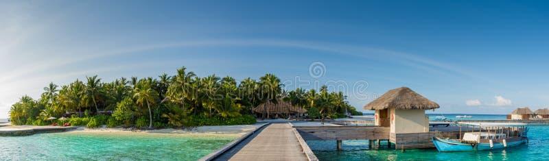 Vista tropicale di panorama del porto dell'isola con le palme alle Maldive immagine stock libera da diritti