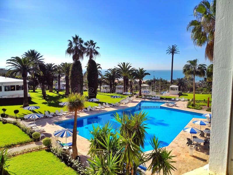 vista a una piscina con la sombrilla y las palmeras imagen de archivo