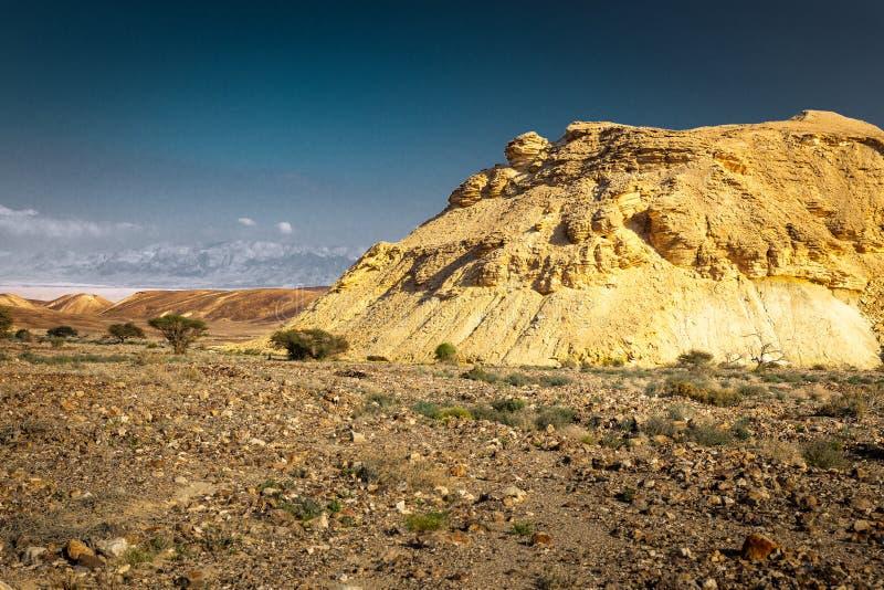 Vista unica del paesaggio di forma della montagna del deserto, natura di Israele immagine stock libera da diritti