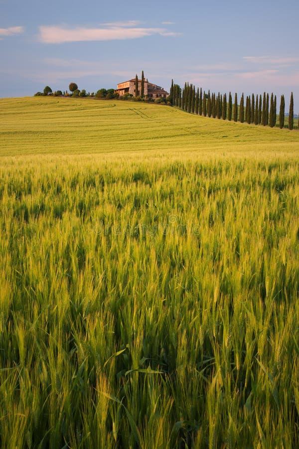 Vista vecchia della villa in Toscana fotografia stock