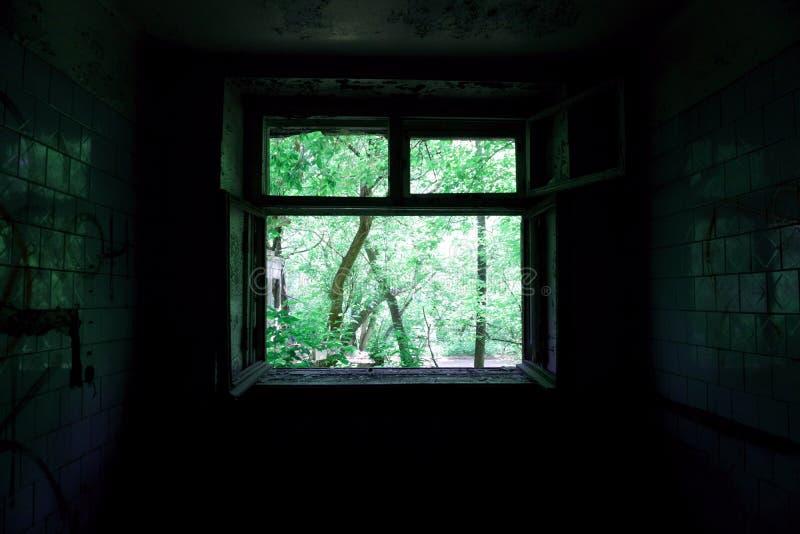 Vista verde-clara através da janela da sala escura fotografia de stock