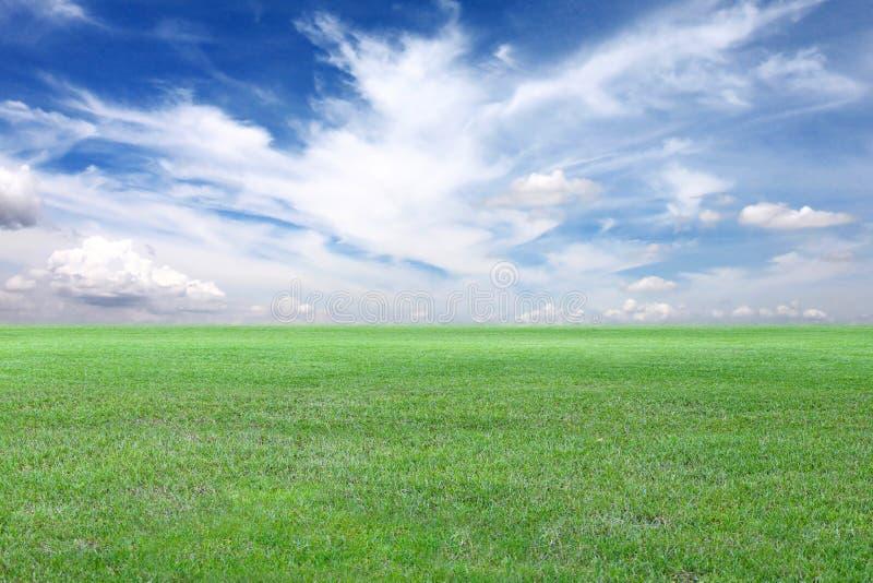 Vista verde del cielo blu e del campo fotografia stock libera da diritti