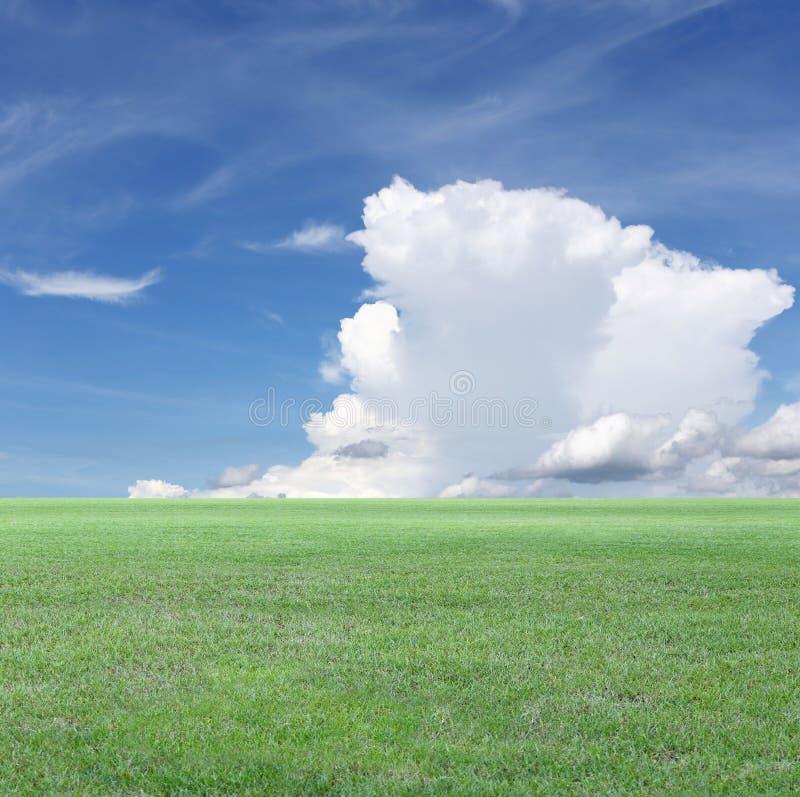 Vista verde del cielo blu e del campo immagini stock