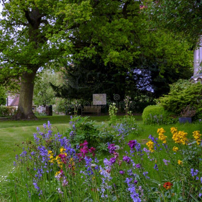 Vista verso la chiesa di St Mary attraverso i letti di fiore selvaggio ed il prato inglese della Camera di Pleistor in Selborne,  fotografia stock libera da diritti