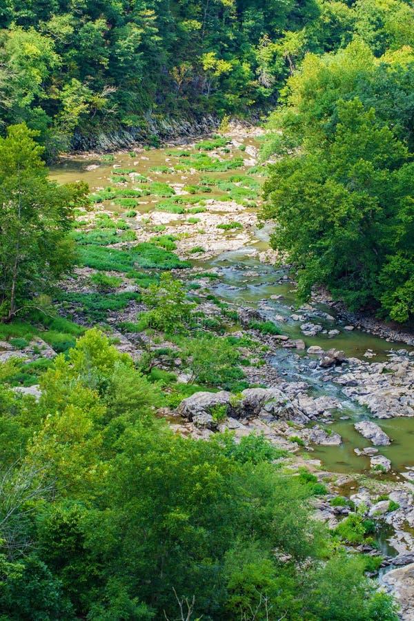 Vista verticale di basso livello dell'acqua del fiume di Roanoke immagine stock