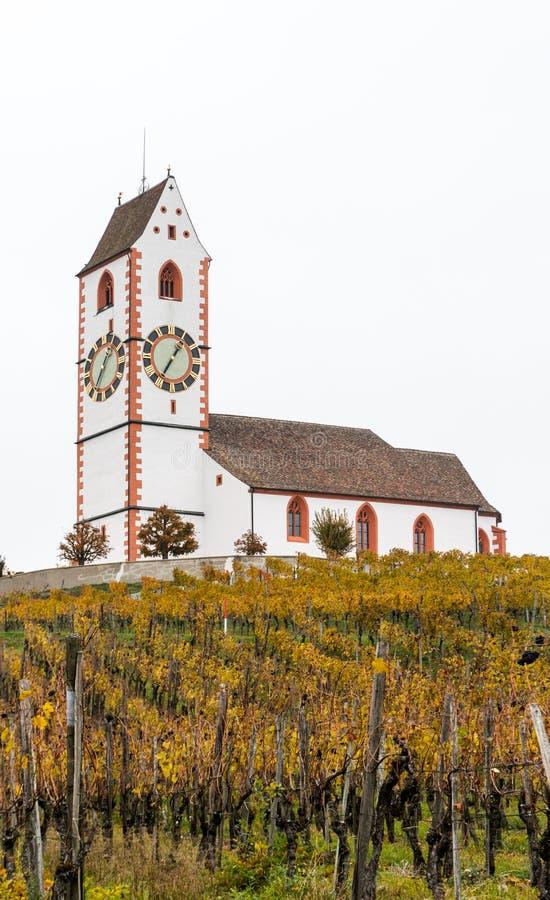 Vista verticale di una chiesa bianca pittoresca del paese circondata dal paesaggio dorato della vigna del pinot nero della vigna fotografie stock libere da diritti