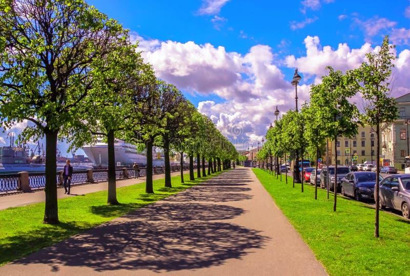 Vista vibrante del callejón soleado del árbol de St Petersburg en el riverbank de Neva debajo del cielo nublado azul con las somb fotografía de archivo libre de regalías