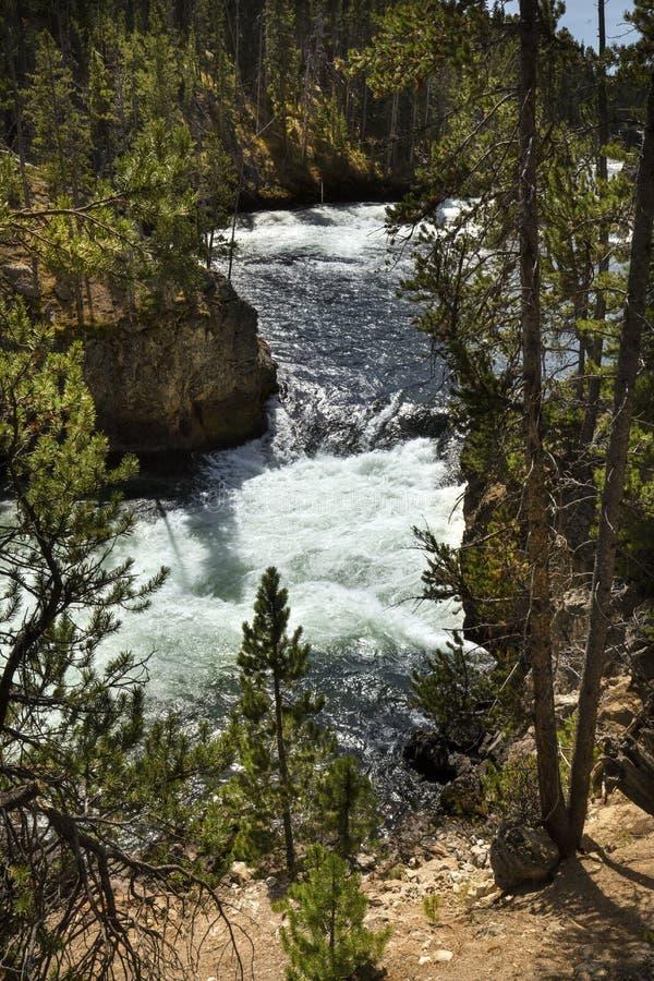 Vista vicina del canale di bobina di cadute di cui sopra del fiume Yellowstone fotografia stock libera da diritti