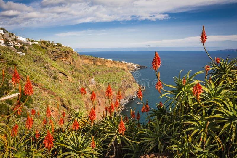 vista vicino alla città di Funchal, isola del Madera, Portogallo fotografia stock libera da diritti