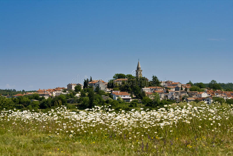 Vista a Zminj y el campo con las flores fotos de archivo