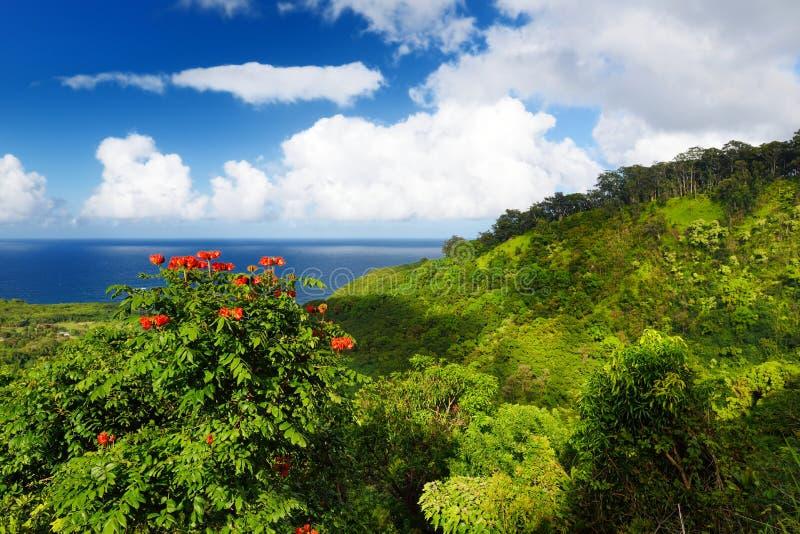 Vistas bonitas da costa norte de Maui, tomadas da estrada de enrolamento famosa a Hana imagem de stock
