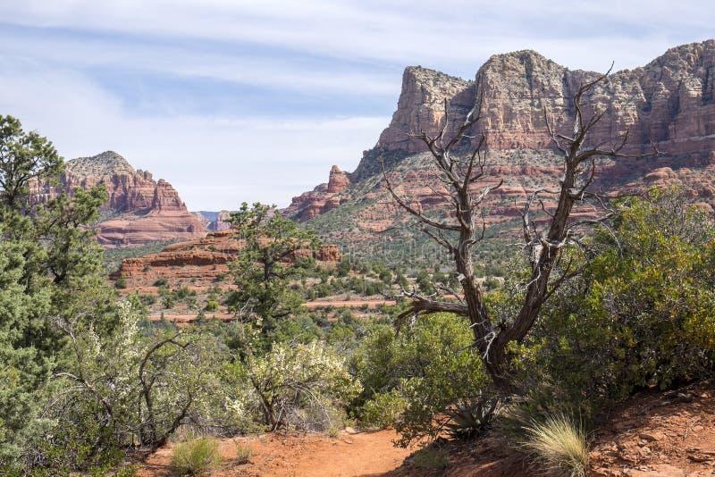Vistas bonitas de Sedona o Arizona #14 foto de stock royalty free