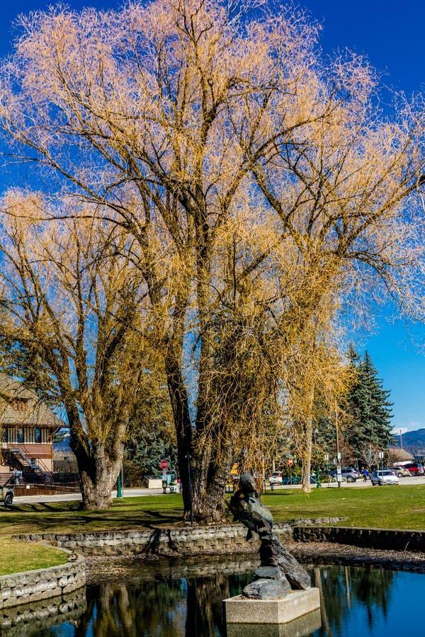 Vistas da cidade do aroubd, peixe branco, Montana, Estados Unidos fotos de stock royalty free