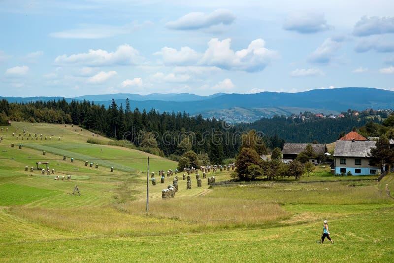 Vistas da vila fotografia de stock royalty free