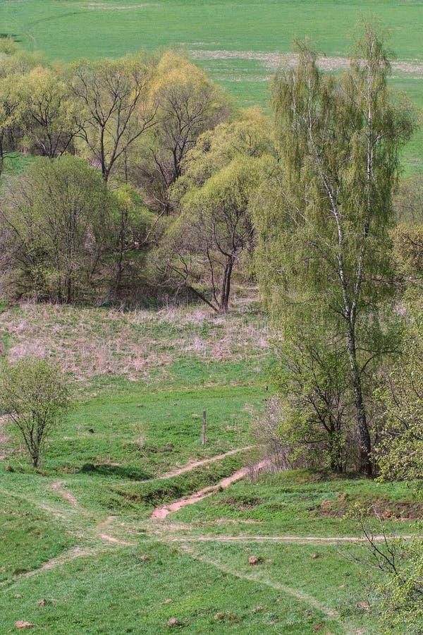 Vistas de la naturaleza en Rusia fotos de archivo