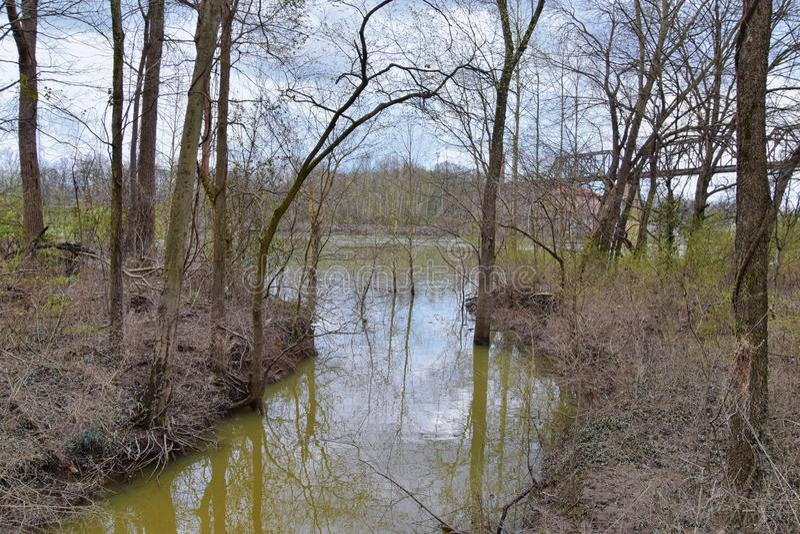 Vistas de la naturaleza y de caminos a lo largo de Shelby Bottoms Greenway y de los rastros naturales del ataque frontal del río  foto de archivo