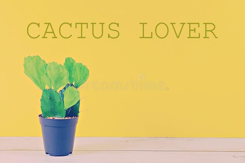 Vistas del CACTUS en fondo en colores pastel amarillo con el texto fotos de archivo libres de regalías