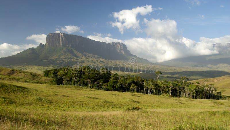 Vistas del soporte Roraima, Venezuela fotografía de archivo