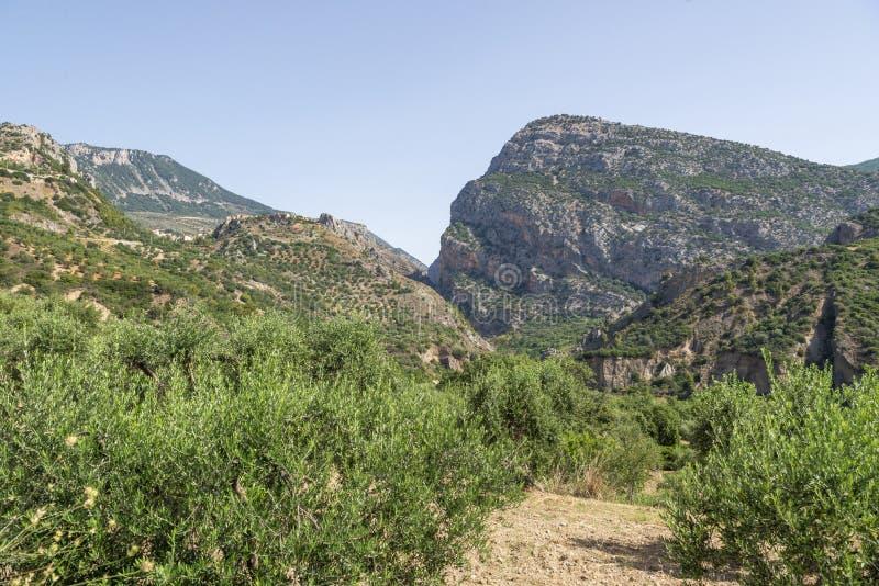 Vistas do parque nacional de Pollino na área da vila de Civita fotografia de stock