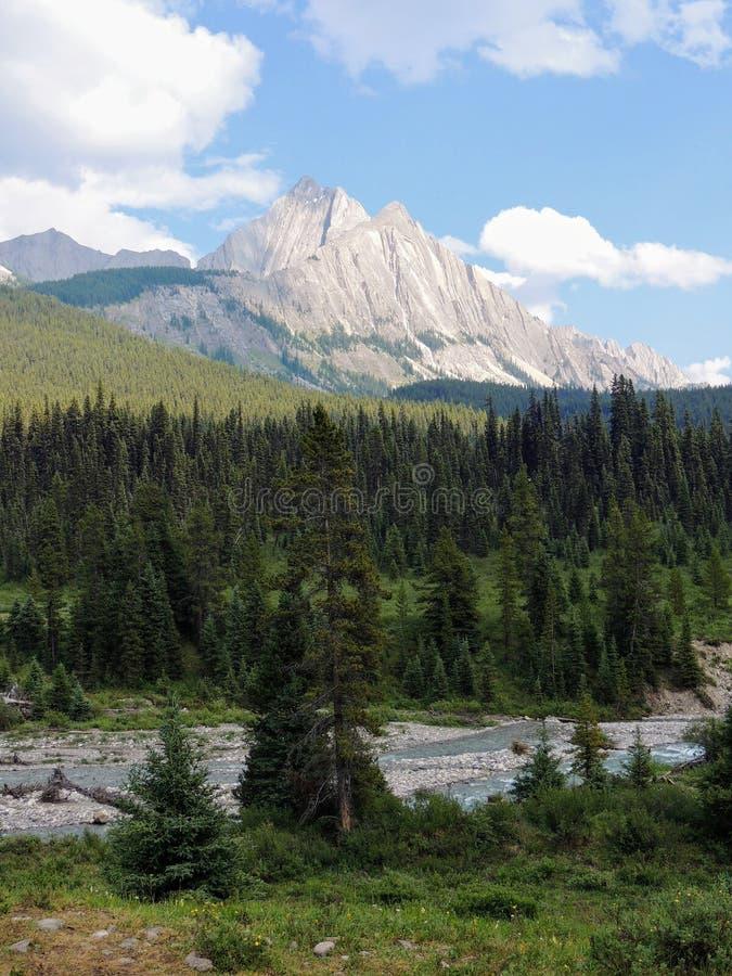 Vistas em torno dos potenciômetros da tinta em Johnston Canyon, parque nacional de Banff, canadense Montanhas Rochosas, Canadá, A imagens de stock royalty free