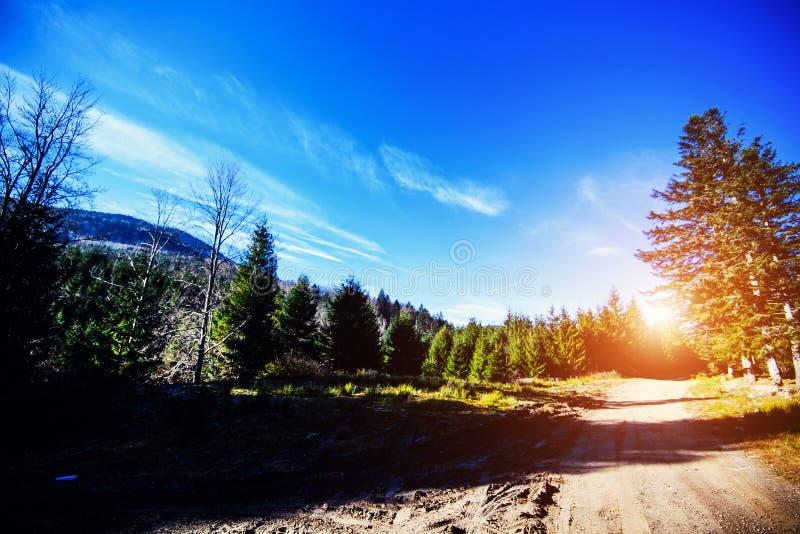 Vistas fantásticas das montanhas Carpathian, Ucrânia, Europa Cena do verão em um dia ensolarado Paisagem da estrada do vale da mo imagens de stock royalty free