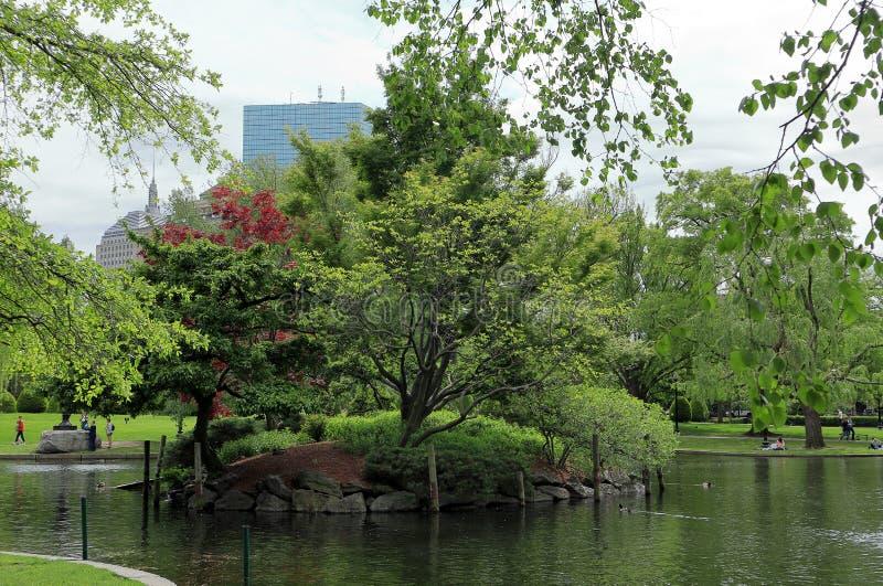 Vistas lindos da lagoa no jardim de Boston Public fotos de stock royalty free