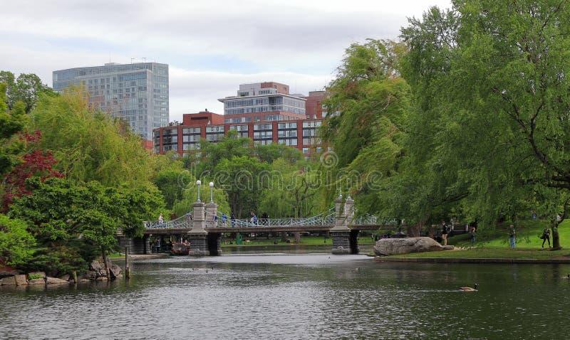 Vistas magníficas de la charca en el jardín público de Boston fotos de archivo