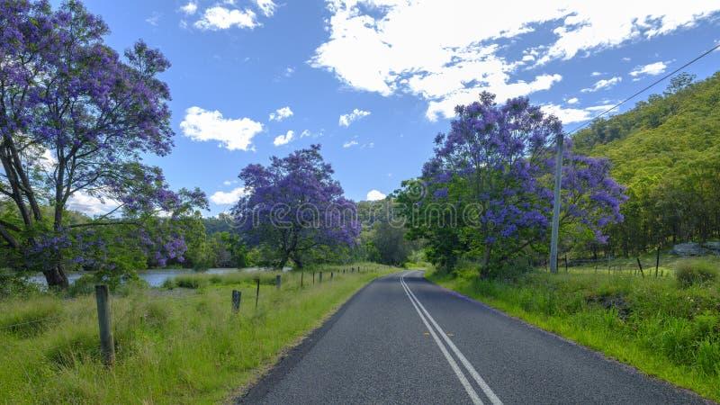 Vistas na estrada de St Albans perto da balsa de Wisemans, Macdonald Valley, NSW, Austrália imagem de stock royalty free